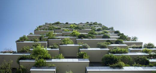 zahrada na balkoně